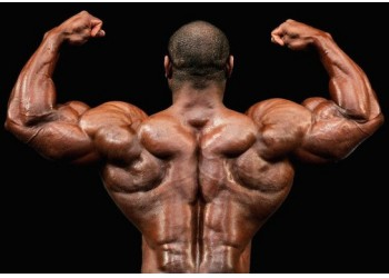 build a wide back